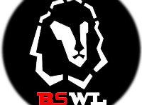 bswlkej888